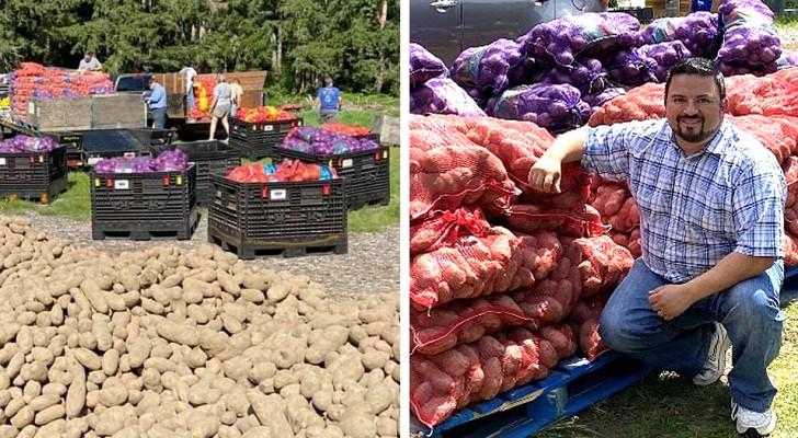 En bonde ber vänner och välgörenhetsorganisationer om hjälp med skörden för att dela ut 3000 ton mat till behövande människor
