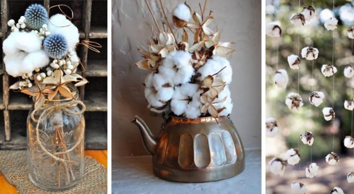 11 compositions adorables à réaliser avec les fleurs vaporeuses de coton