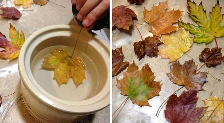La méthode pour cirer les feuilles de l'automne et les préserver afin de créer des décorations très belles et durables