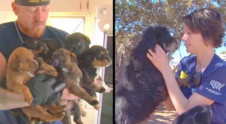 An animal rescue team arrives in a country house: what they find is SHOCKING!