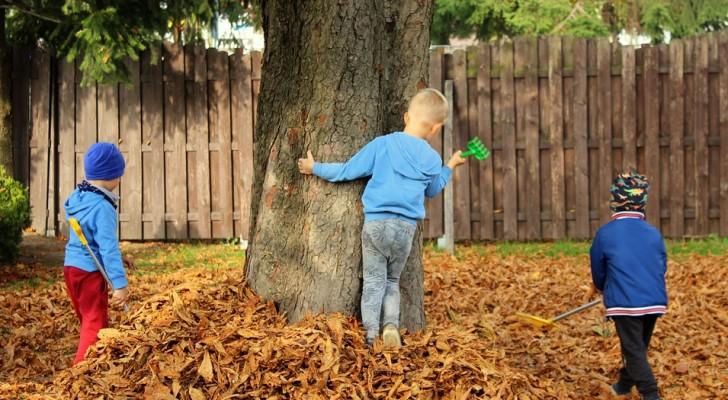 In Finlandia alcuni asili hanno creato delle piccole foreste: i bambini ora hanno un sistema immunitario più forte