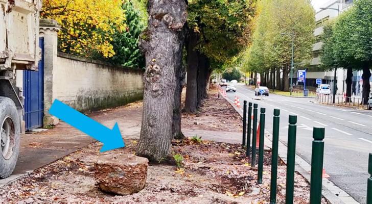 Diese französische Stadt entfernt Asphalt von den Bürgersteigen, um die Wurzeln der Bäume