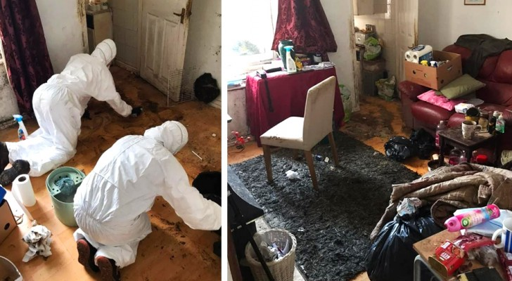 He hadn't cleaned the house for 12 years, so his friends helped him: after 50 hours of cleaning the apartment was spick and span