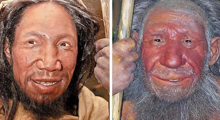 La guerre des 100 000 ans entre les Néandertaliens et les Homo sapiens : on a retrouvé les traces d'un très long conflit