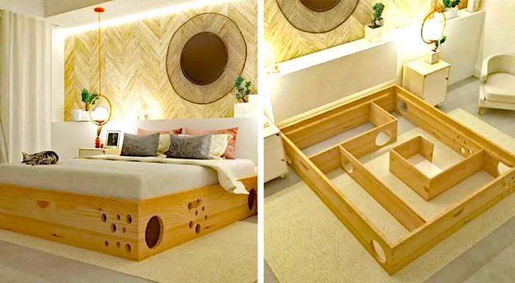 Ett företag skapar en sänglabyrint, perfekt för katter och deras mänskliga vänner