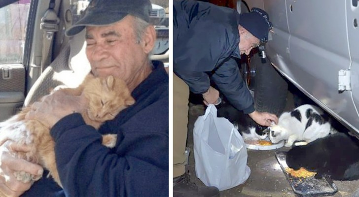 A 76-year-old man feeds stray kittens in his neighborhood by selling scrap metal all day