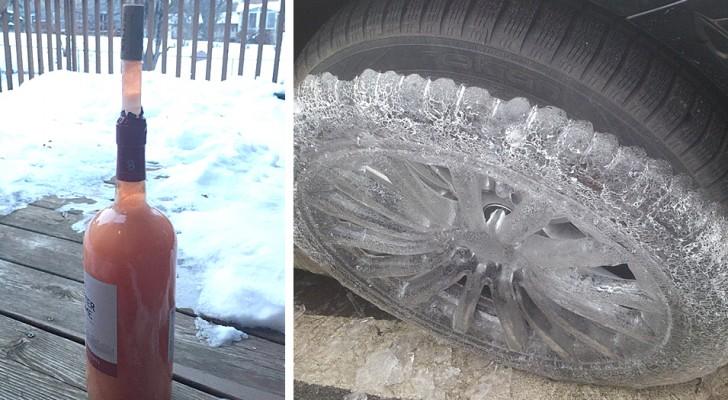 17 bilder som visar att ingen eller inget kan undkomma kylan: man fryser bara av att titta på dem