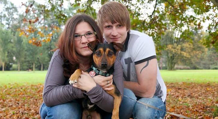 Eles haviam perdido as esperanças, mas depois de 6 anos reencontram seu cachorro a 300 quilômetros de casa