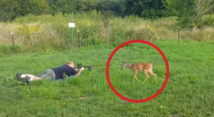 Deze mannen zijn GESCHOKT door het gedrag van een hert tijdens een schietoefening