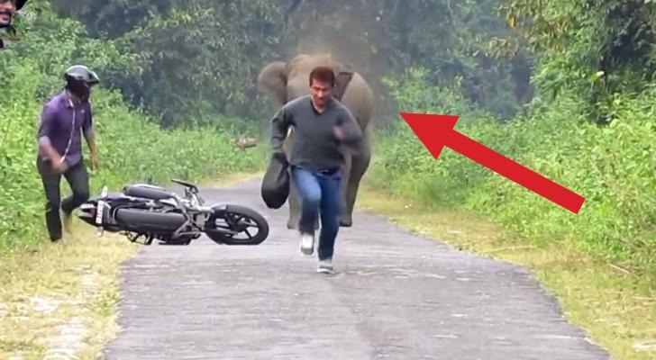 Due uomini vanno in motocicletta, ma qualcuno... non vuole farli passare!