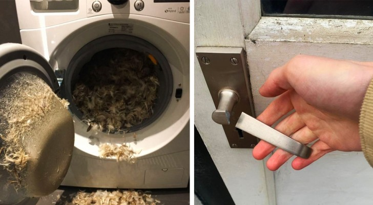 18 photos of people who had a bad day to say the least
