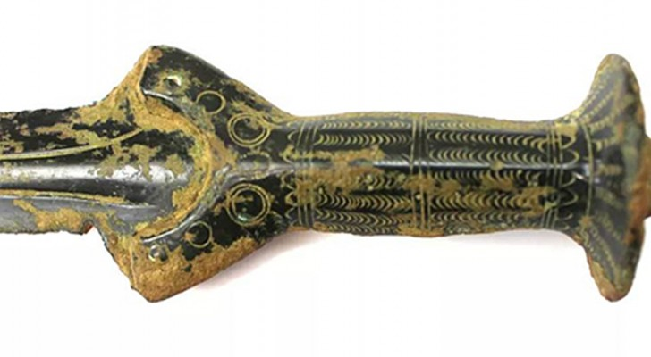 Un cercatore di funghi scopre per caso una spada risalente a 3.300 anni fa: era conficcata nella roccia
