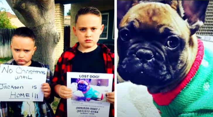 Twee broertjes besluiten geen kerstcadeautjes te openen totdat ze hun vermiste hond hebben gevonden