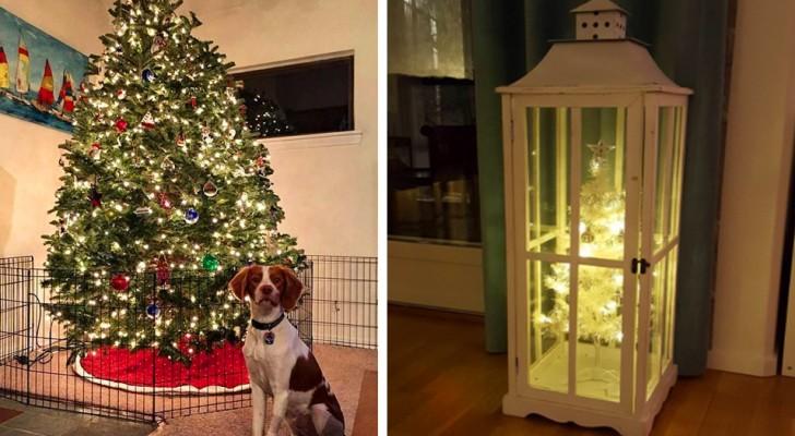 16 personas que lograron armar un árbol de Navidad a prueba de perros y gatos