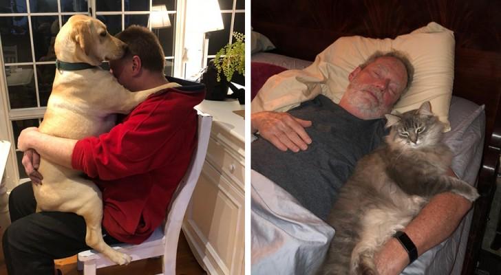 17 persone che non volevano un animale domestico in casa e ora lo trattano come un membro della famiglia
