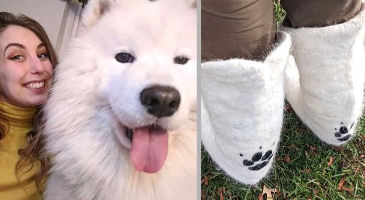 Ihr Hund verliert so viele Haare, dass ihre Besitzerin beschließt, diese zu sammeln und ein Paar Stiefel damit zu beschichten