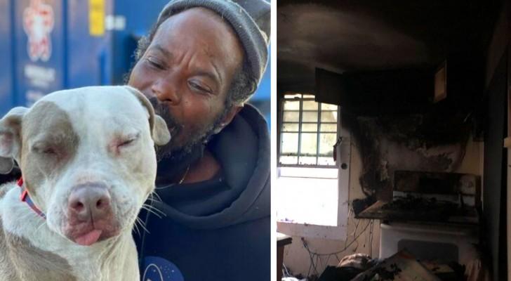 Een dakloze man slaagt erin om in zijn eentje alle dieren uit een brandende schuilplaats te redden