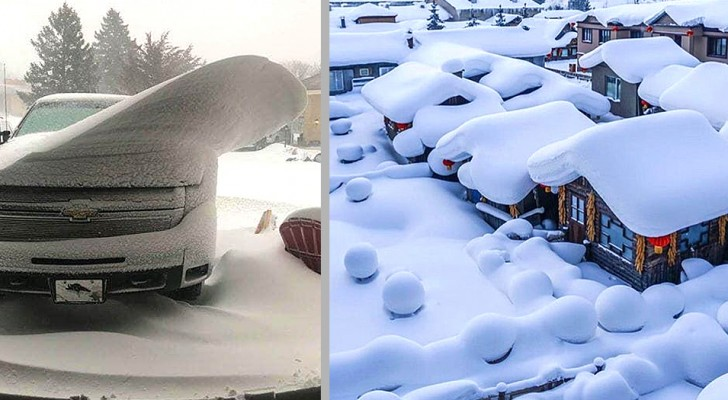21 photos fascinantes nous montrent que la neige peut embellir même les choses les plus simples