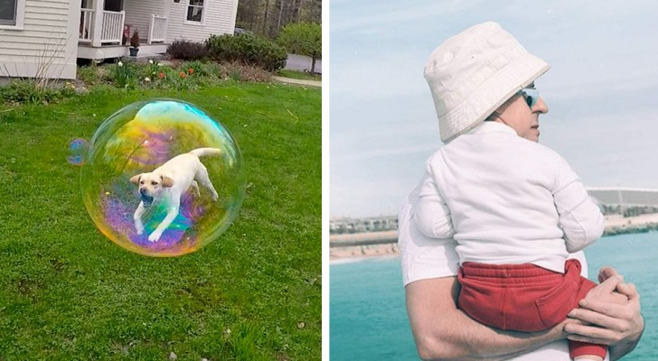 15 foto scattate con un tempismo perfetto dimostrano che la realtà non è sempre quel che sembra