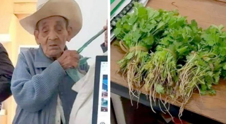 Ein Bauer, der kein Geld hat, bietet an, eine Rechnung mit Gemüse aus seinem Garten zu bezahlen: Der Beamte nimmt an
