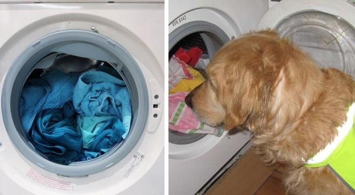 Pelucchi e pilling sul bucato: i trucchi per evitarli quando usiamo la lavatrice