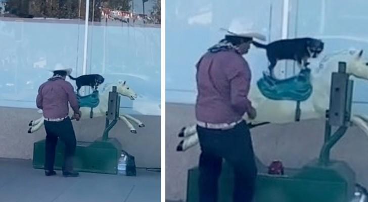 Un uomo viene filmato mentre fa giocare il suo cane su un cavallo meccanico