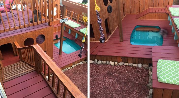 Costruisce una villa da sogno per i suoi cani: ha cucce, altalene, piscina, telecamere e scale interne
