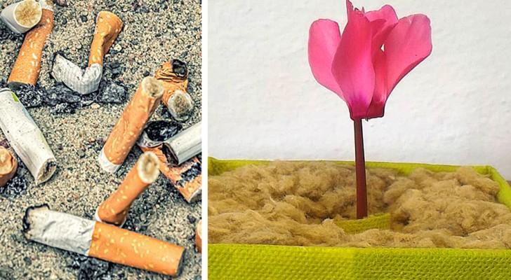 Un team di ricercatori italiani trasforma i mozziconi di sigaretta in substrato per piante e carburante green