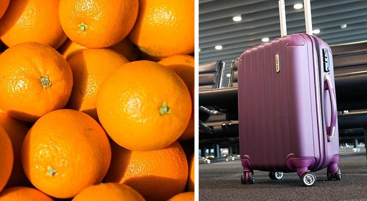 Mangiano 31 kg di arance in meno di 30 minuti per non pagare il sovrappeso dei bagagli in aeroporto