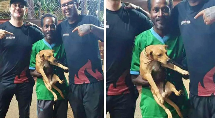 A homeless man and his dog find a wallet full of money and decide to return it to the owner