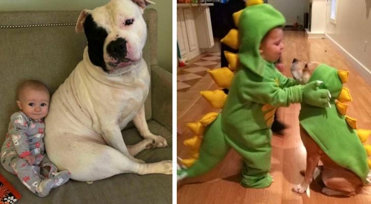 Era barn behöver en hund: 17 foton fulla av sötma som beskriver vänskapen mellan barn och valpar