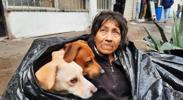 Una anciana vagabunda prefiere vivir en la calle que en un refugio: no quiere separarse de sus amados perros