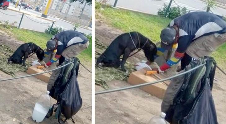 Een dakloze man zorgt voor zijn gehandicapte hond: hij geeft hem te eten en beschouwt hem als zijn kind