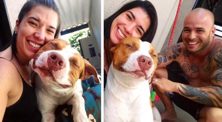 Nonostante le difficoltà economiche, questa coppia non ha mai considerato l'idea di abbandonare il proprio cane