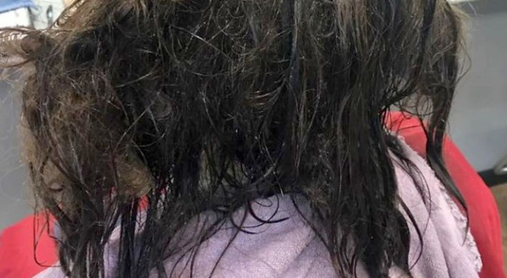 A hairdresser takes 13 hours to cut a girl's unkempt hair: she hadn't taken care of it for months