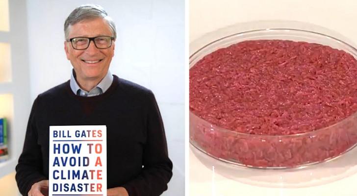 Mangiare solo carne sintetica: la proposta di Bill Gates per salvare il Pianeta dal disastro climatico