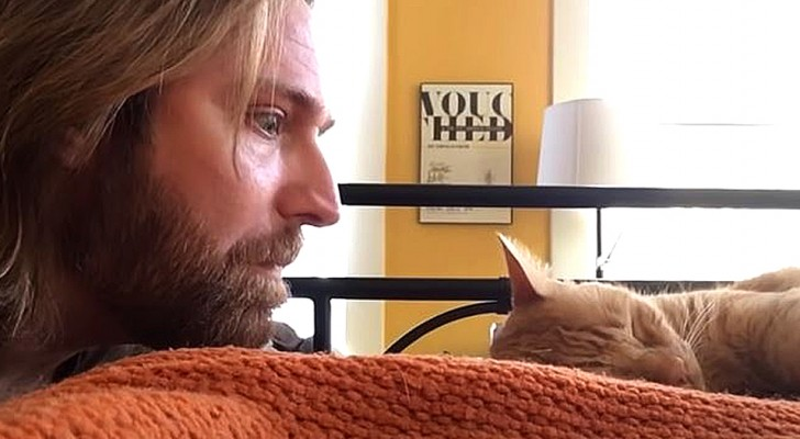 Il gatto lo sveglia ogni notte miagolando e lui si vendica: il video è esilarante