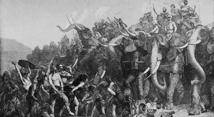 Het onopgeloste mysterie van Hannibal: waar kwamen zijn oorlogsolifanten vandaan?
