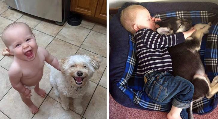 15 gulliga bilder som visar att även barn borde ha en hund i sitt liv