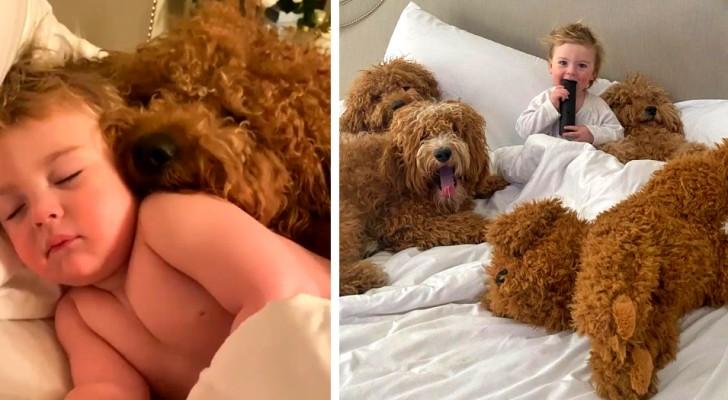 Una mamma documenta l'incredibile amicizia tra il suo bambino e i tre cani di famiglia: le foto sono dolcissime