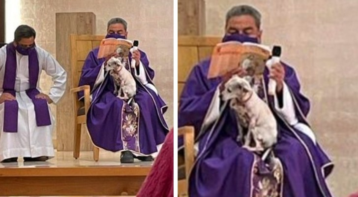 A priest is photographed while reciting mass with a sick dog on his lap: he does not want to leave him alone