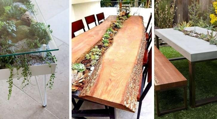 Piante grasse: scopri come decorarci un tavolo per arredare in modo naturale e affascinante