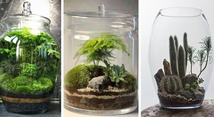 Jardin miniature : inspirez-vous de ces splendides terrariums à réaliser dans des pots en verre