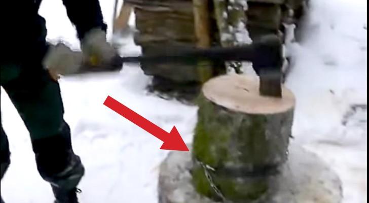 Un hombre envuelve una cadena alrededor de un tronco. El motivo es GENIAL