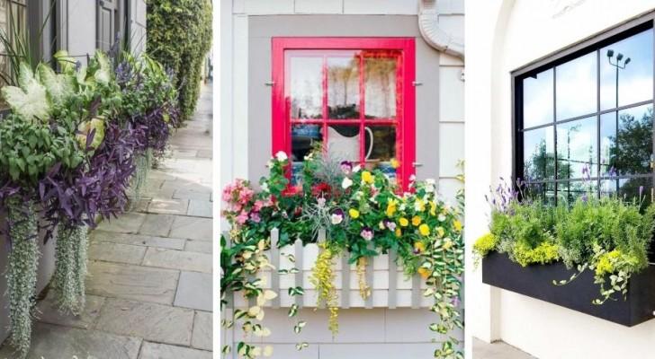 Decora le tue finestre in modo unico con spettacolari fioriere da appendere ai davanzali