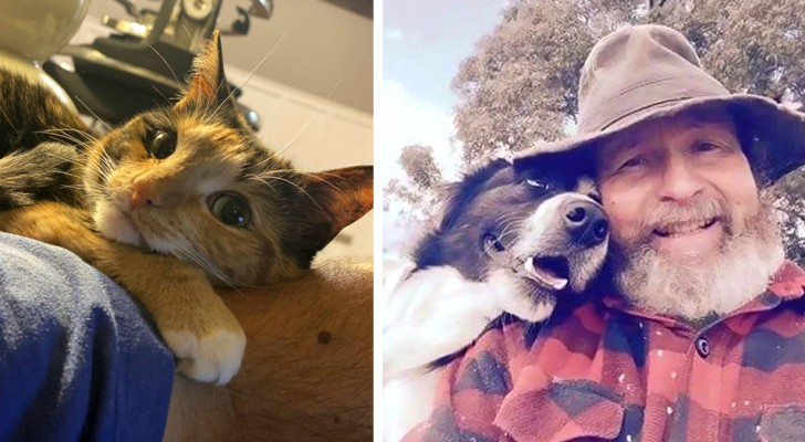 Alle liefde in één blik: 21 tedere foto's van dieren en hun baasjes