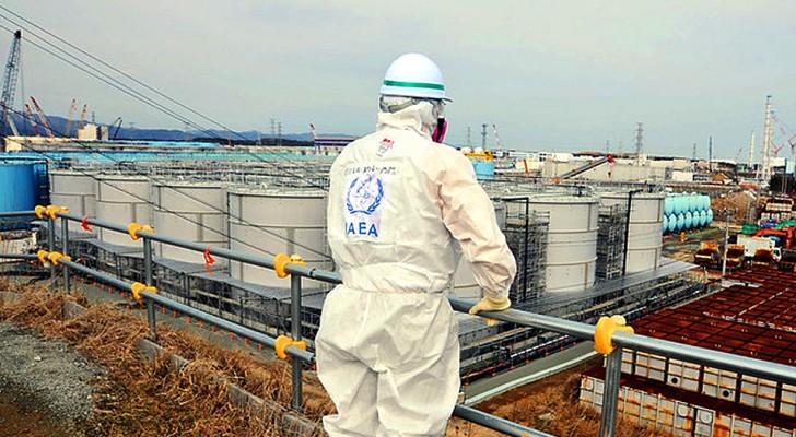 Het radioactief water van Fukushima wordt in zee geloosd: wat zijn de risico's en gevolgen?