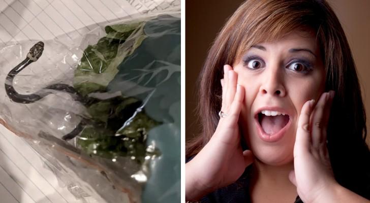 Vrouw vindt een levende slang in de zak sla die ze bij de supermarkt heeft gekocht