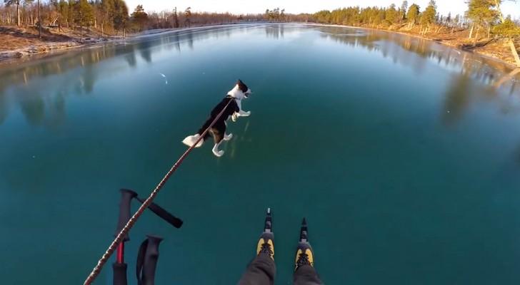 Elke winter op dit meer kun je iets MAGISCH ervaren