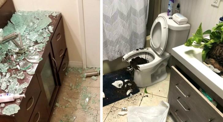 Een reeks ongelukkige gebeurtenissen: 16 mensen die erin slaagden thuis echte rampen te veroorzaken